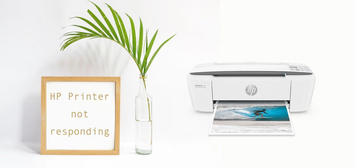एचपी प्रिंटर को कैसे ठीक करें प्रतिक्रिया नहीं दे रहा है
