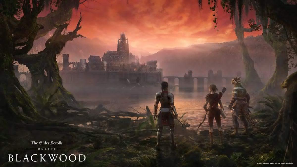 [해결됨] The Elder Scrolls Online: Blackwood 지연